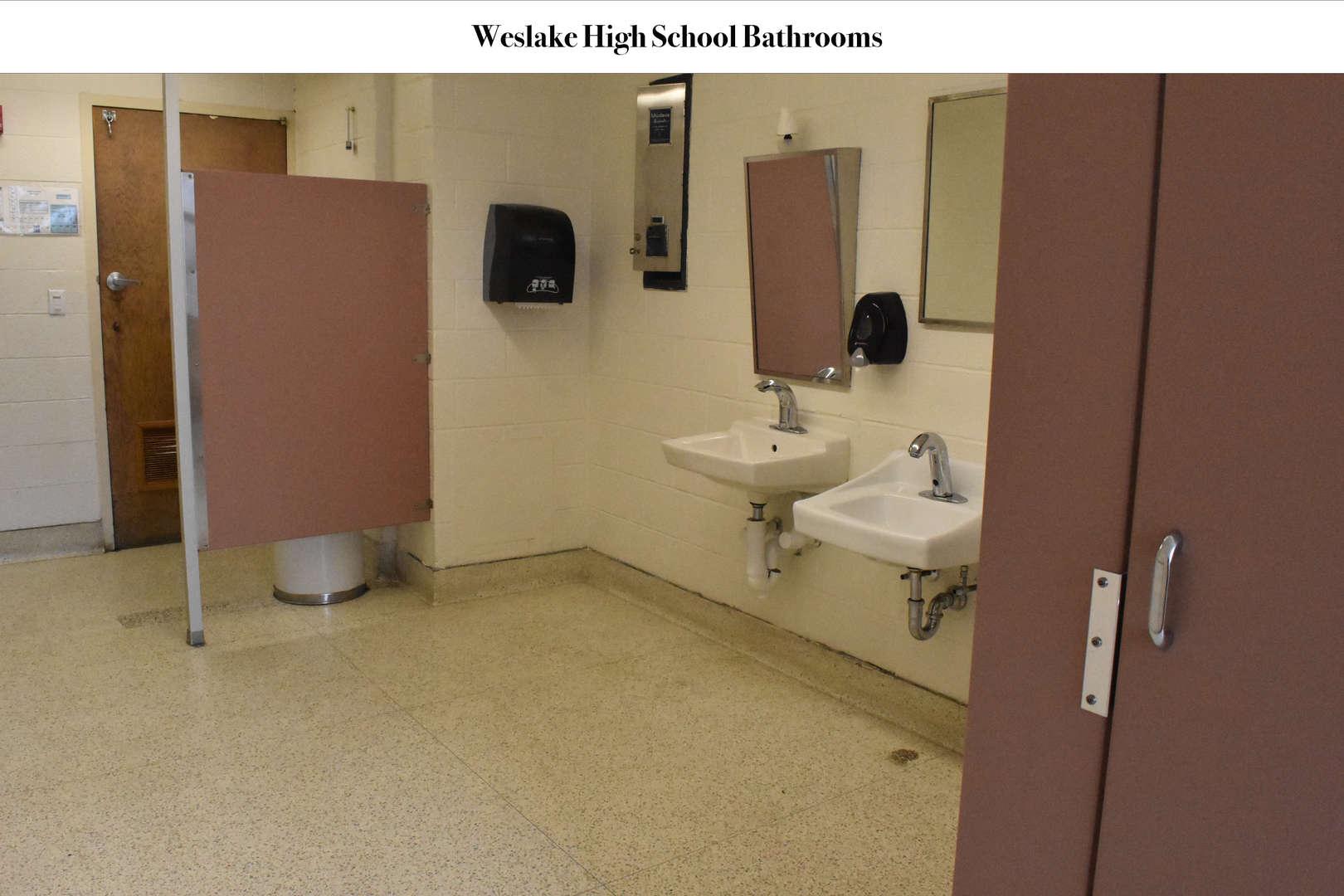 WHS bathroom sinks before renovation