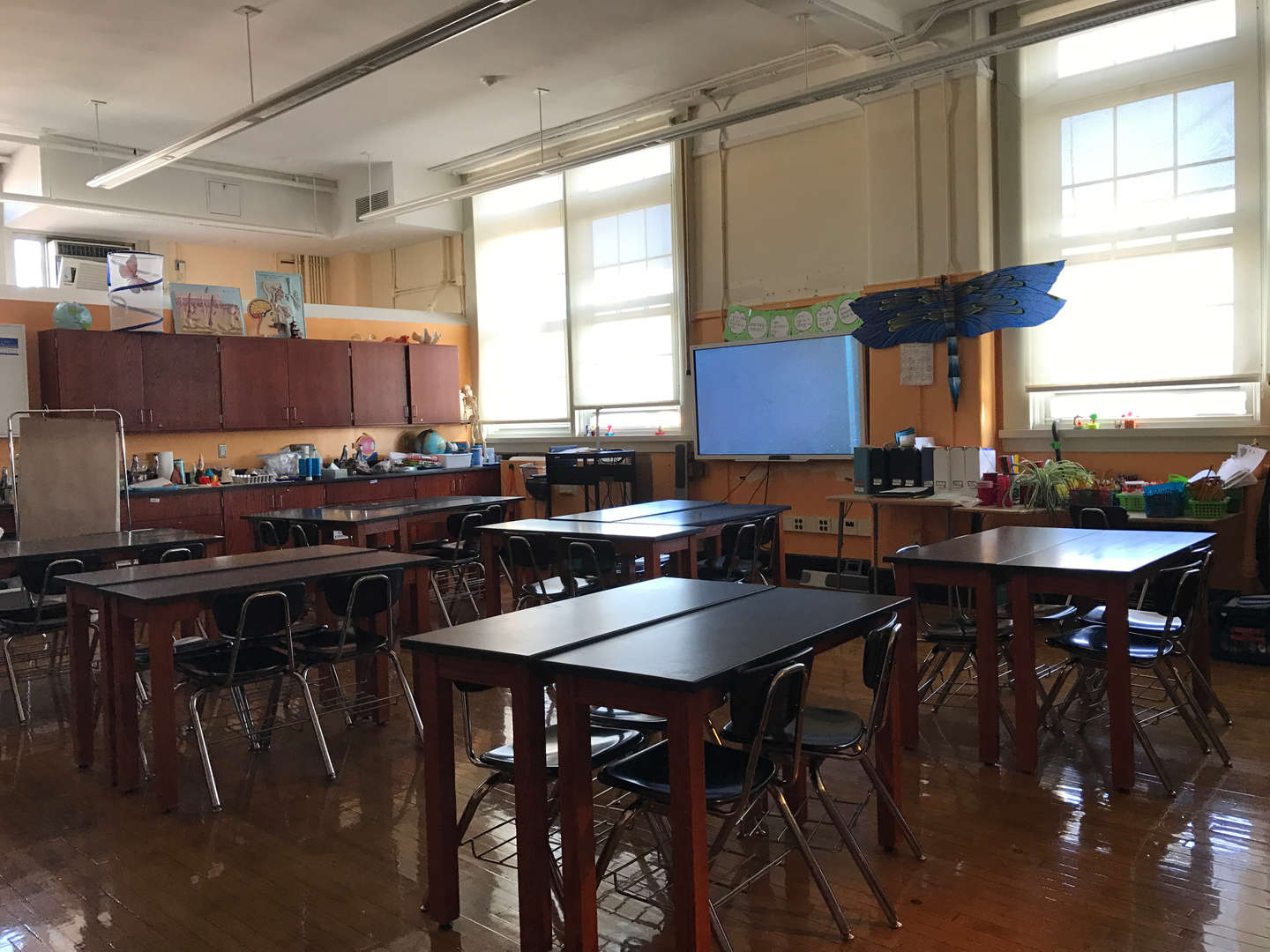 Our wonderful science lab!