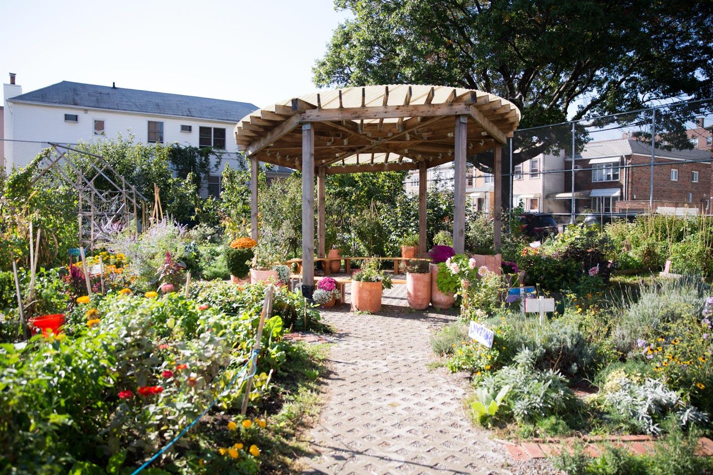 P.S. 216's Community Garden