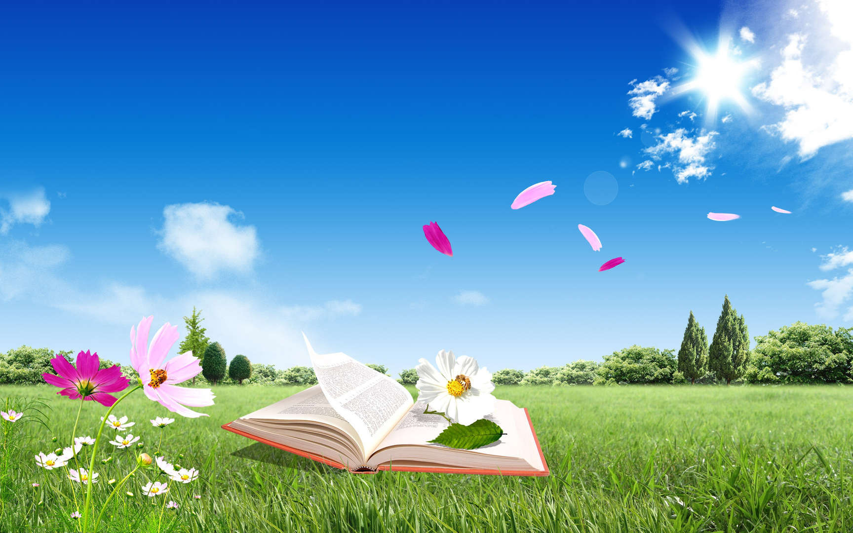book open outside in a field on grass