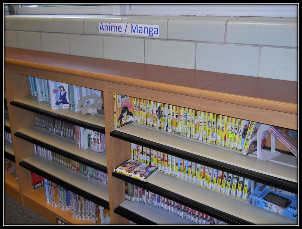 The Graphic Novel section is a favorite for many library visitors.