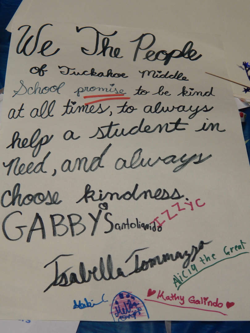 Student constitution poster