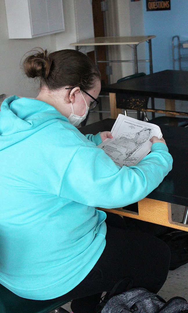 A female student studies a reference chart at her desk