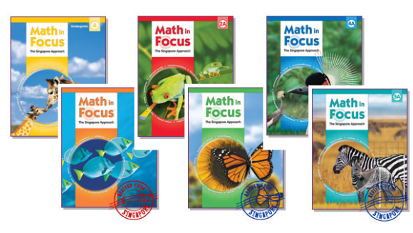math in focus books