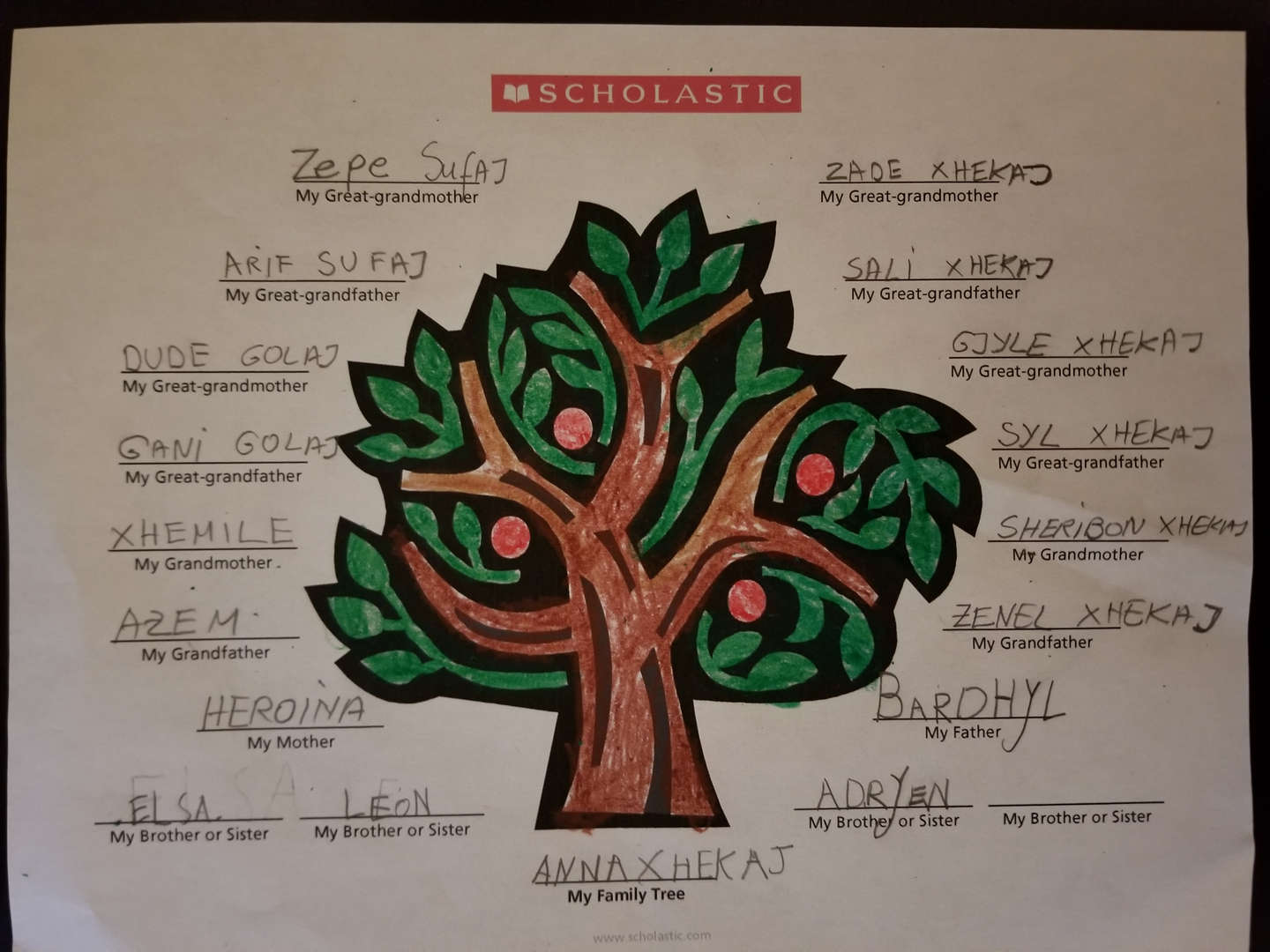 Ms. Diciembri's class creates heritage trees