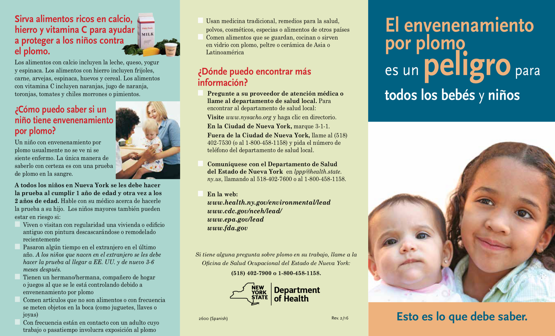 Pamphlet on lead poisoning in children in Spanish