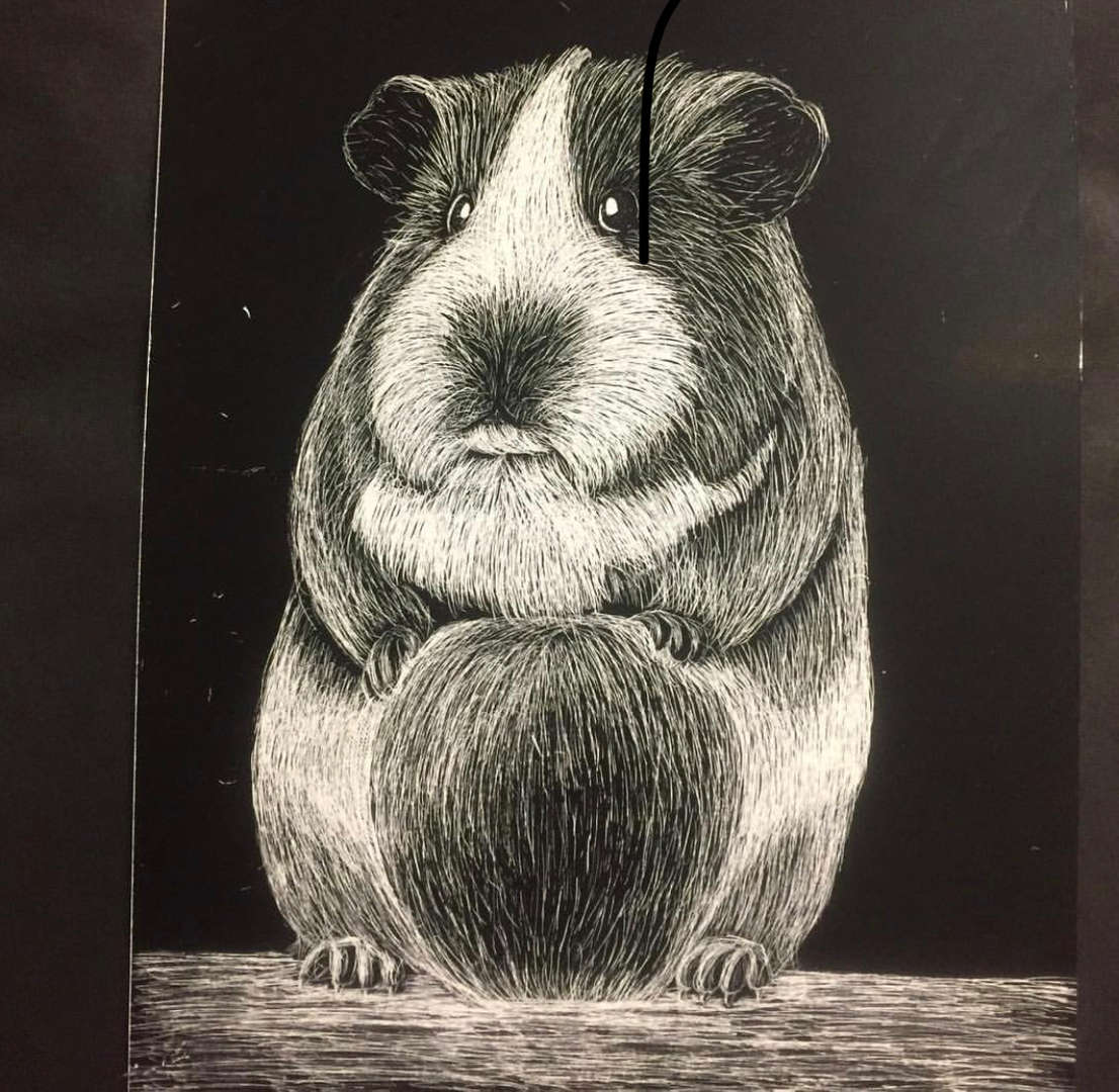 Sketching of a gerbil