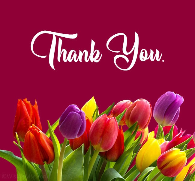 Thank you Card Message