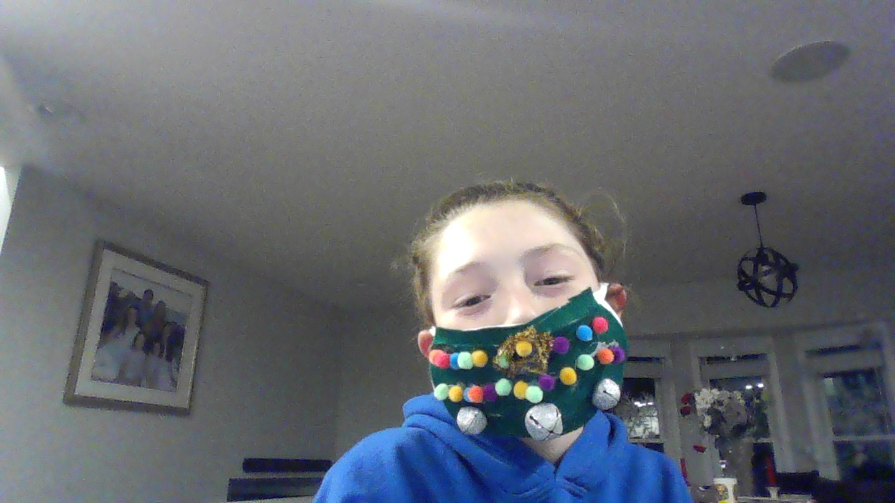 holiday decorated mask