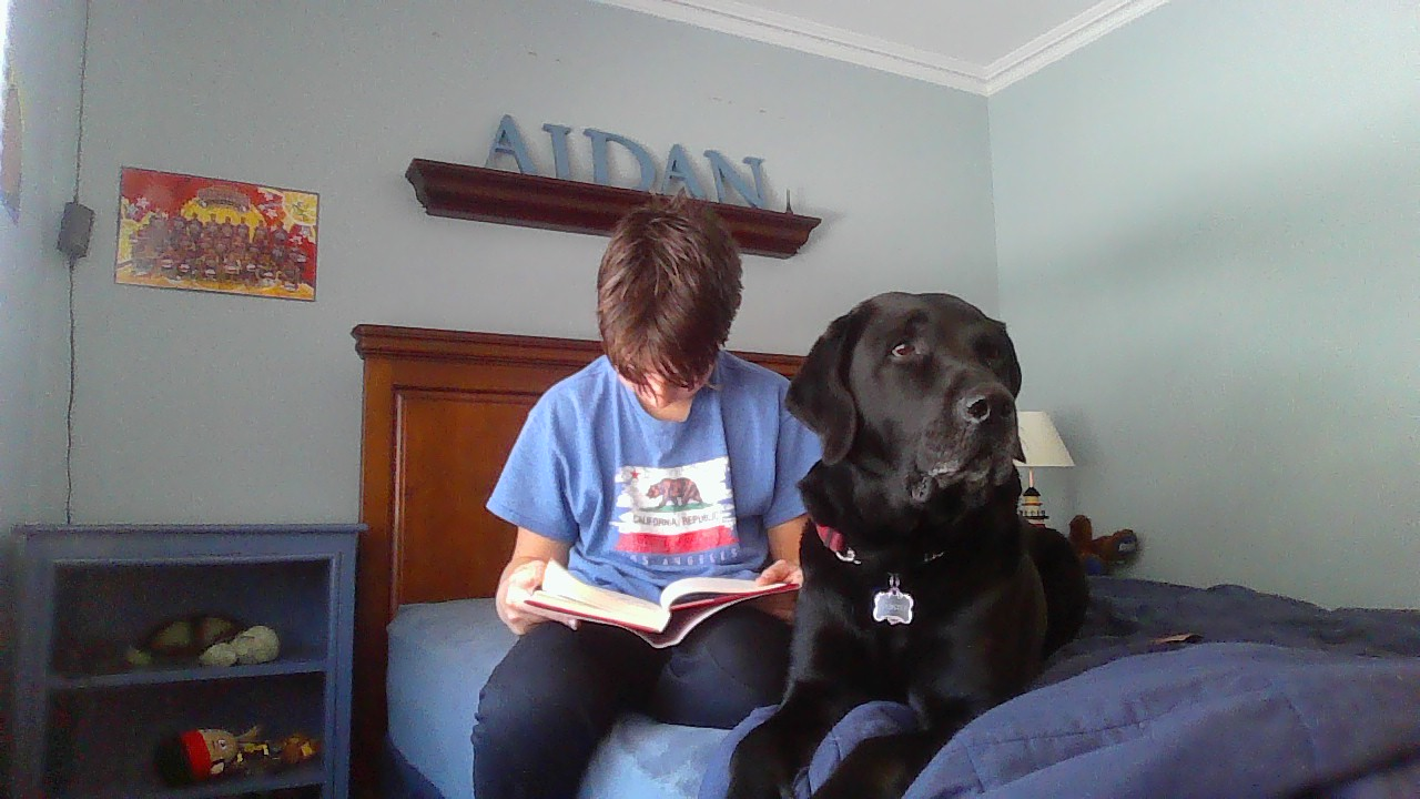 Reading with the dog