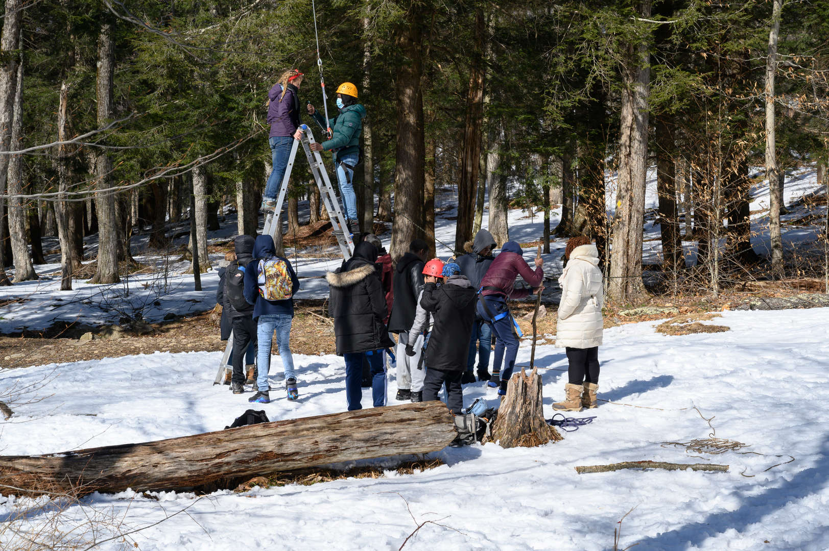 Several students assist another to climb a ladder to mount a giant swing