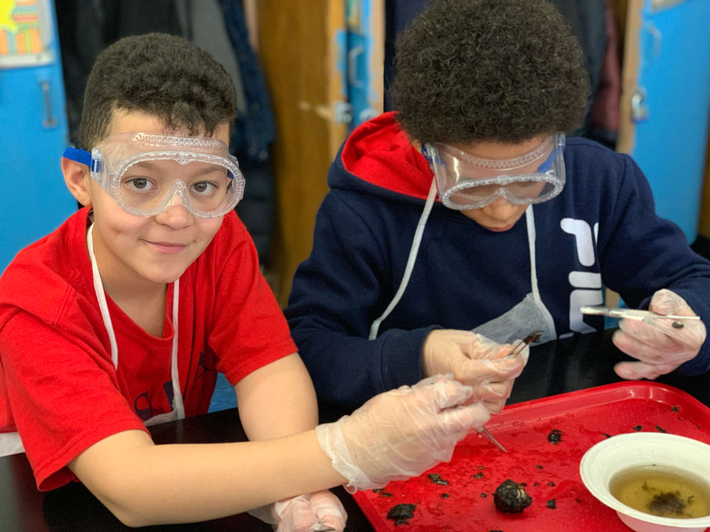 NSLA students in owl pellet dissection