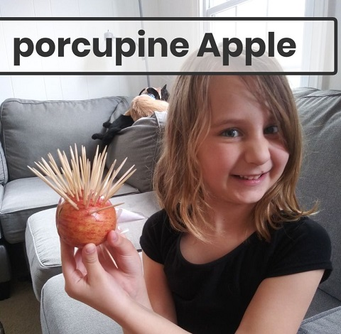 student created porcupine with an apple and toothpicks