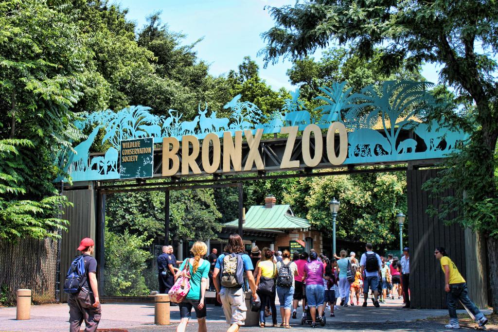 Trip to Bronx Zoo