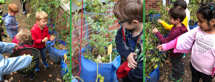 Edible Garden and Nature Trail