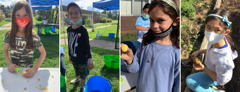 Harvest Day brings all students to the school garden.