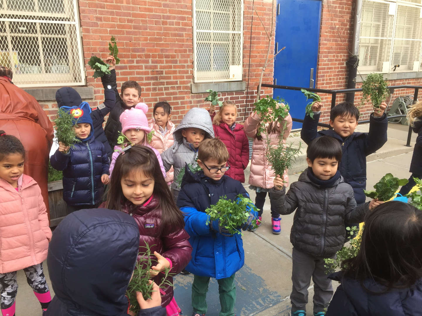 Kindergarten Class Students with Handfuls of Herbs