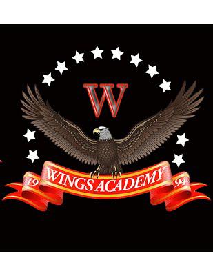 WINGS Academy High School Logo.