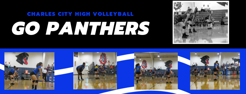 Panthers Volleyball Team