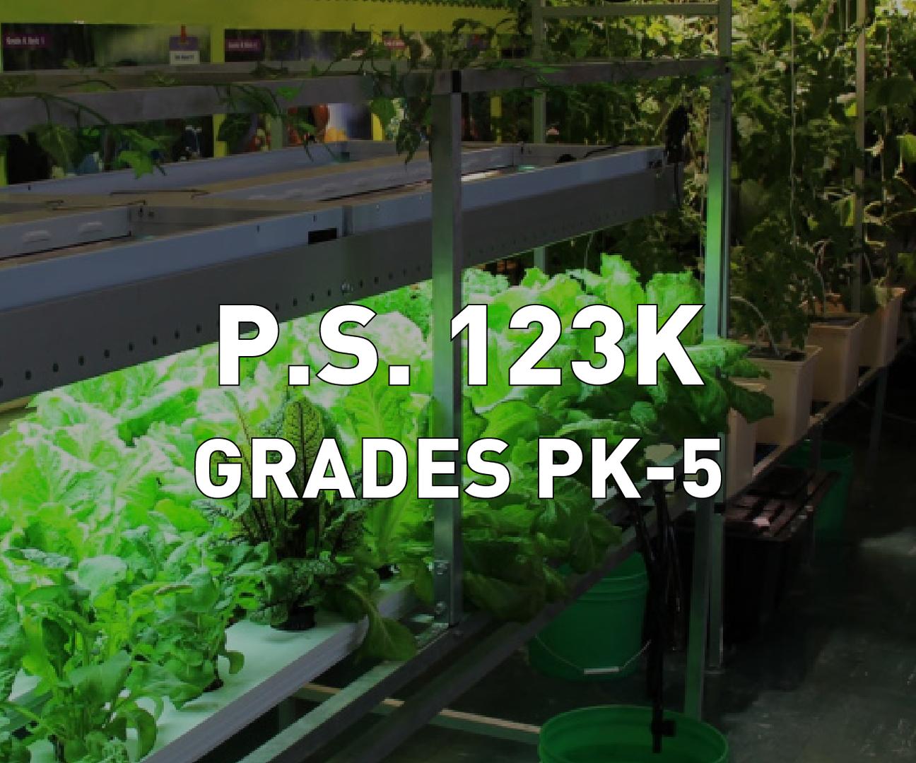 P.S. 123K Grades PK-5