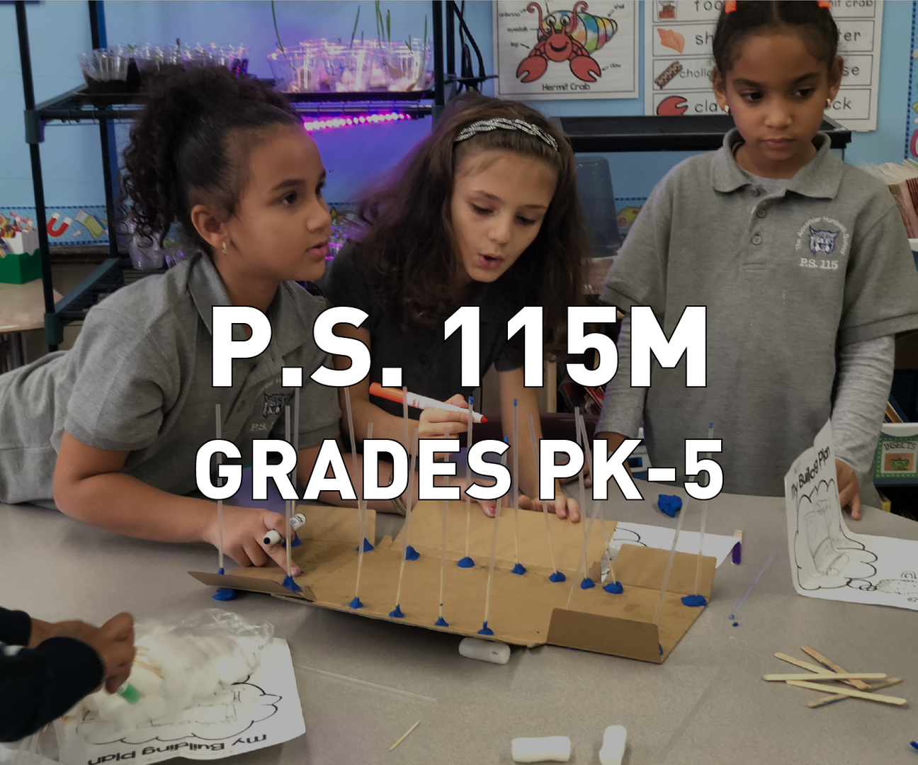 P.S. 115M Grades PK-5