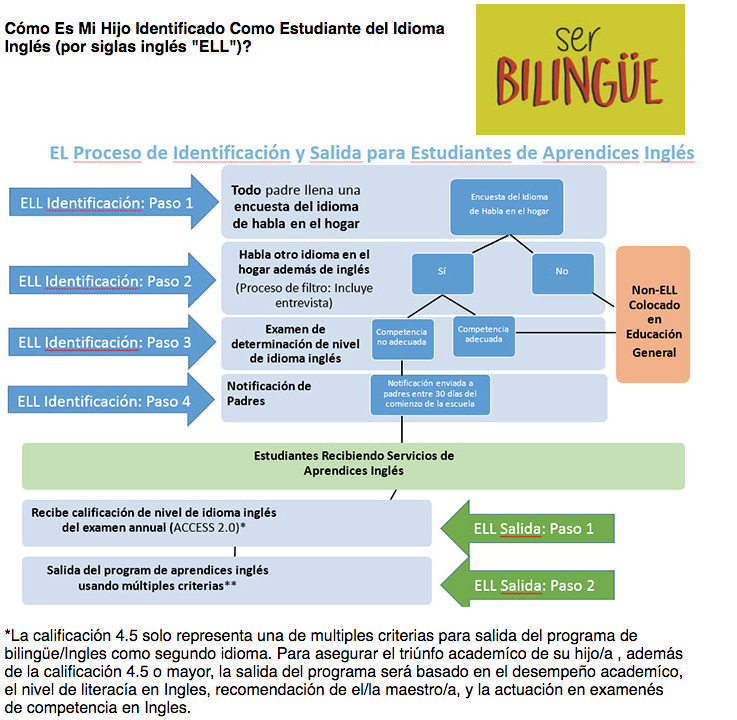 Process of identifying whether your child is an ell student - displayed in spanish