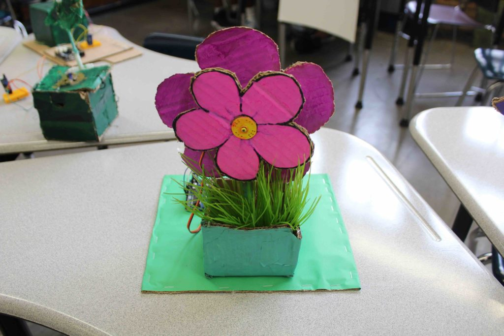 STEM & Art program Flower project
