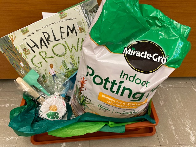 The Harlem Grown Gardening Kit gives children the opportunity to make their own window box herb garden.