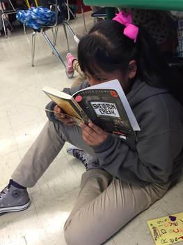 Student reading a novel