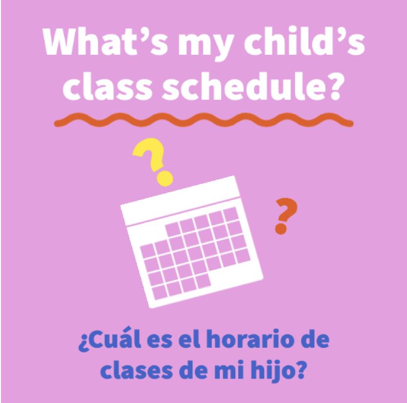 What's my child's schedule?