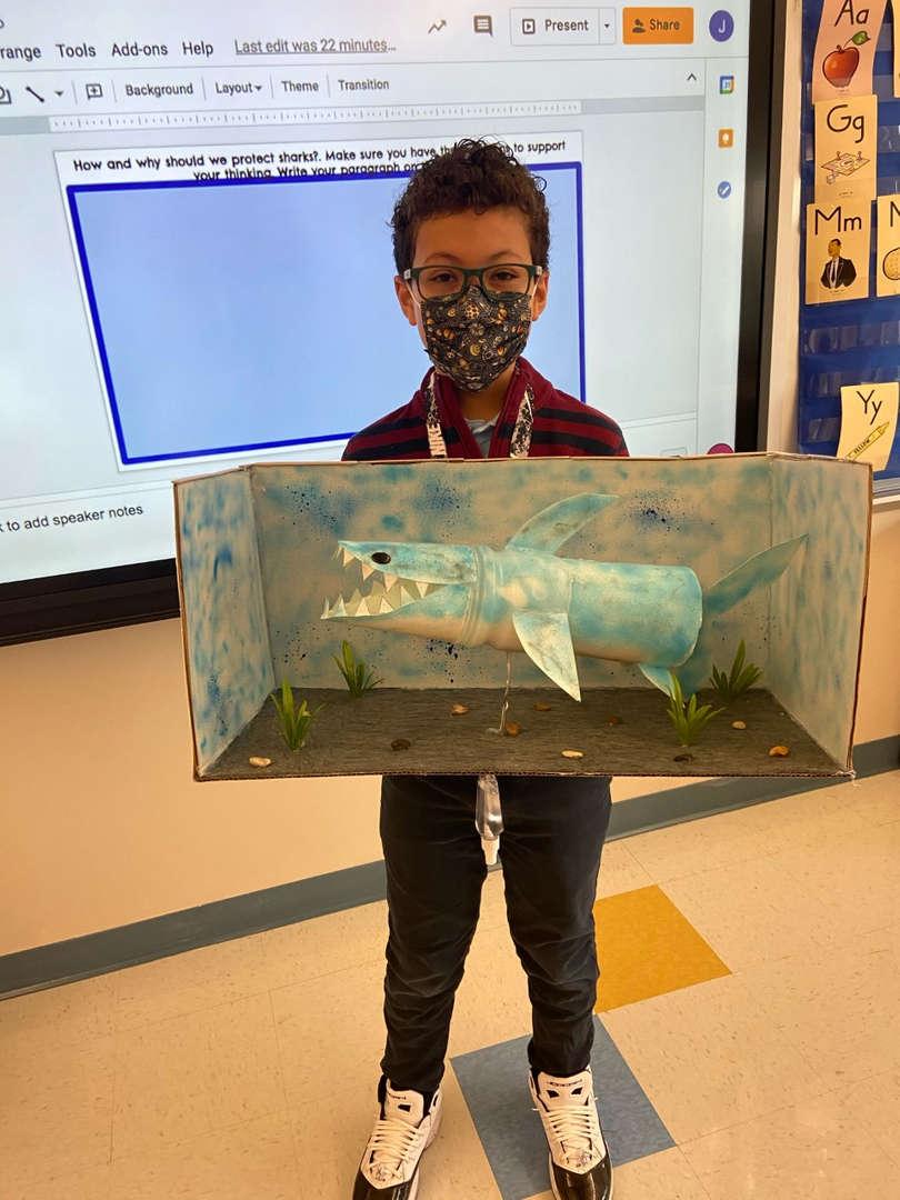 Derek's Recycled Shark