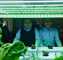 kids in front of hydroponic plants