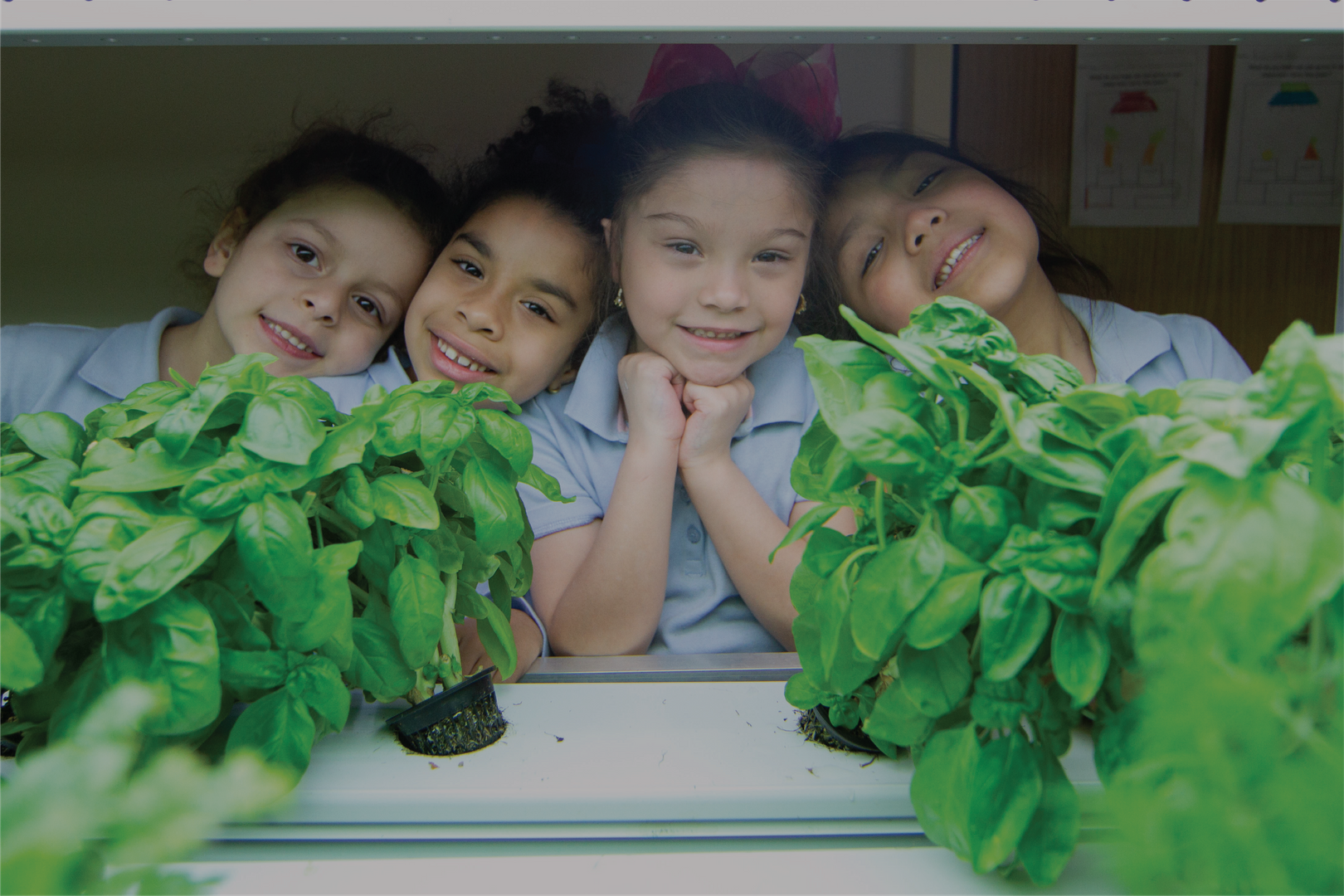Kids looking through plants in the hydroponic farm