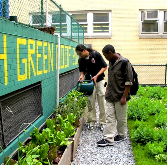 Two students tending to plants outdoors