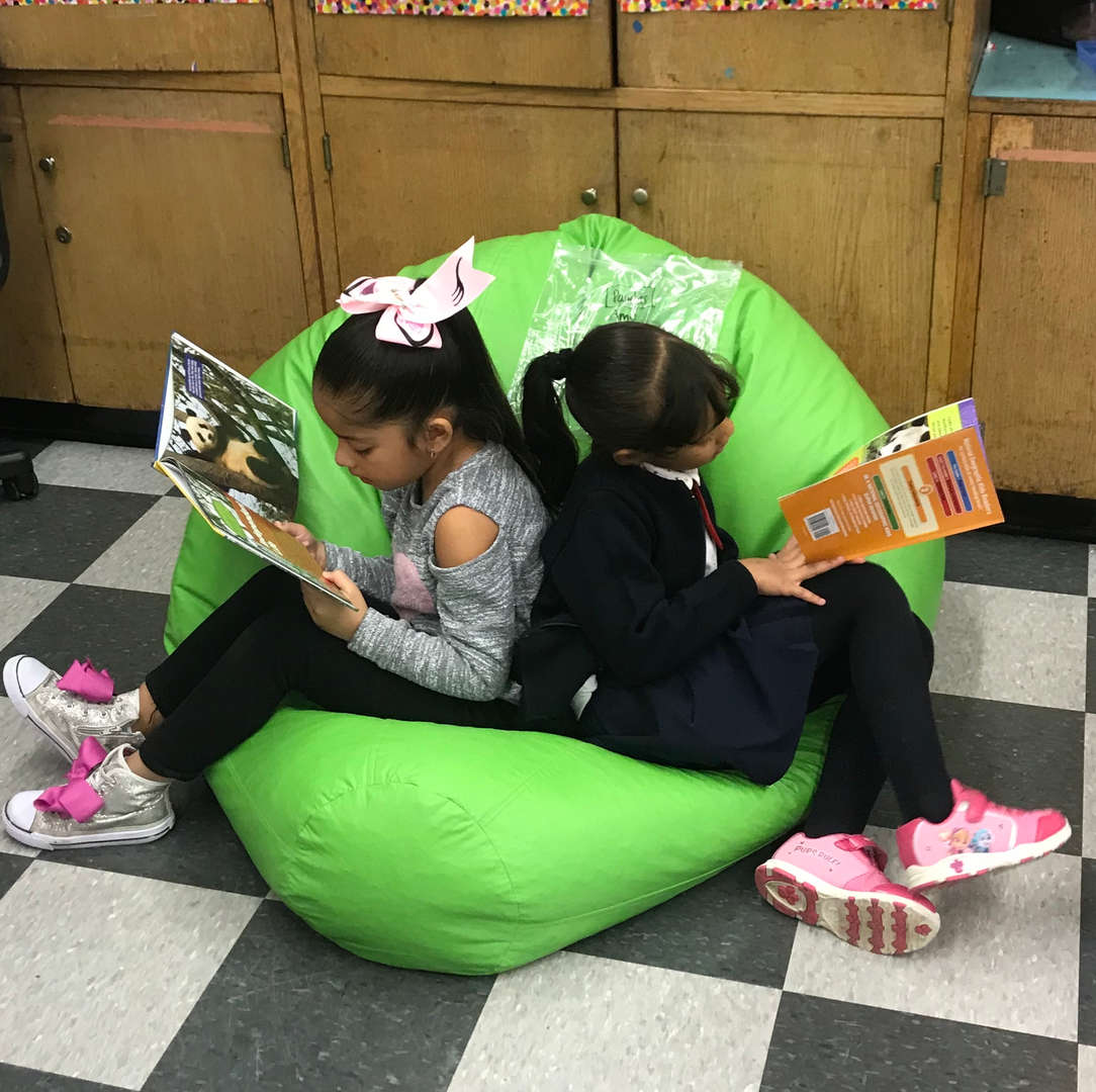 Students reading on bean bag