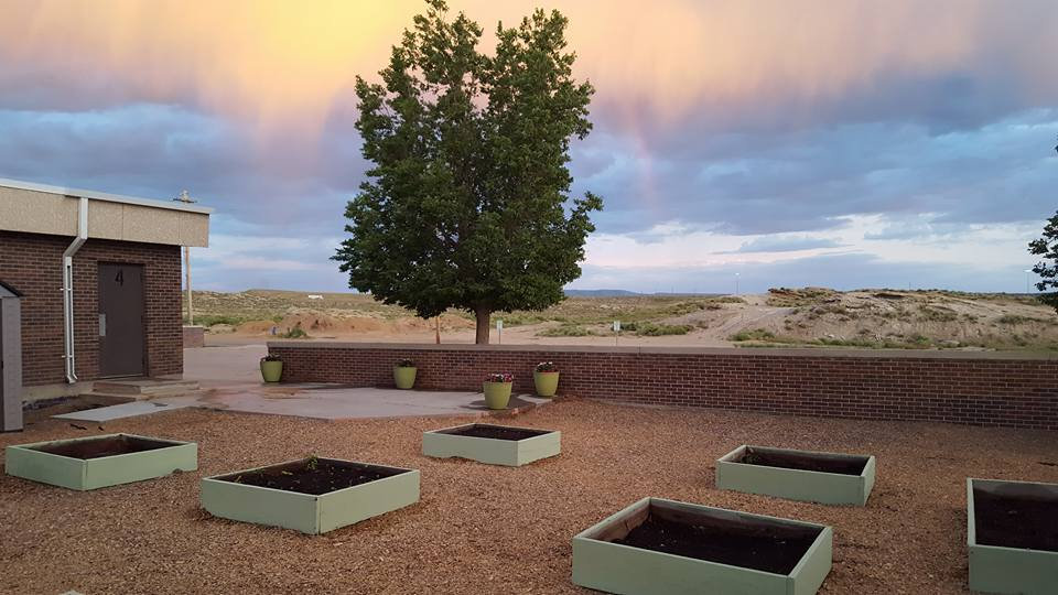 Desert Views school garden