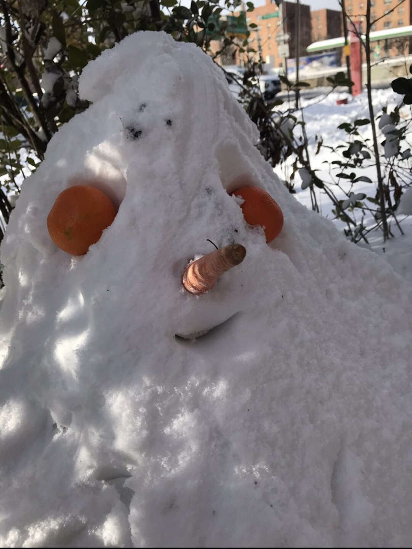 a snow man with a carrot as a nose, two eyes and mouth