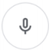Google microphone button