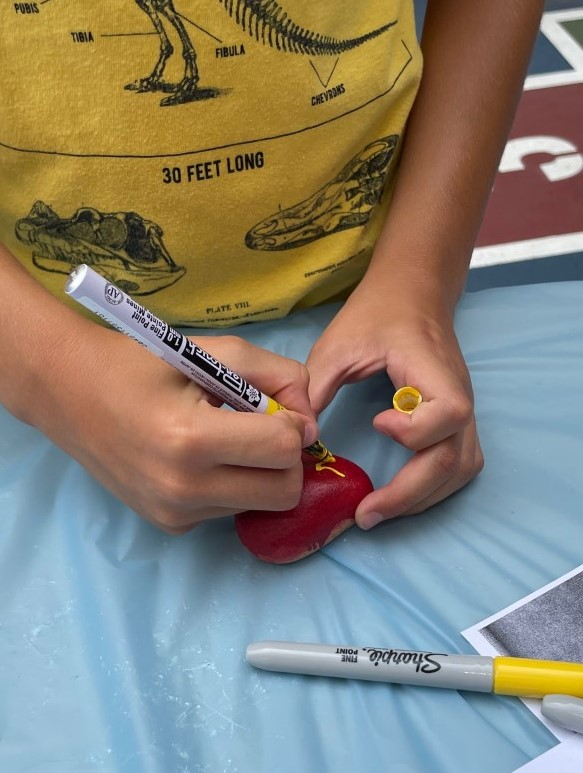 Painting a red rock.