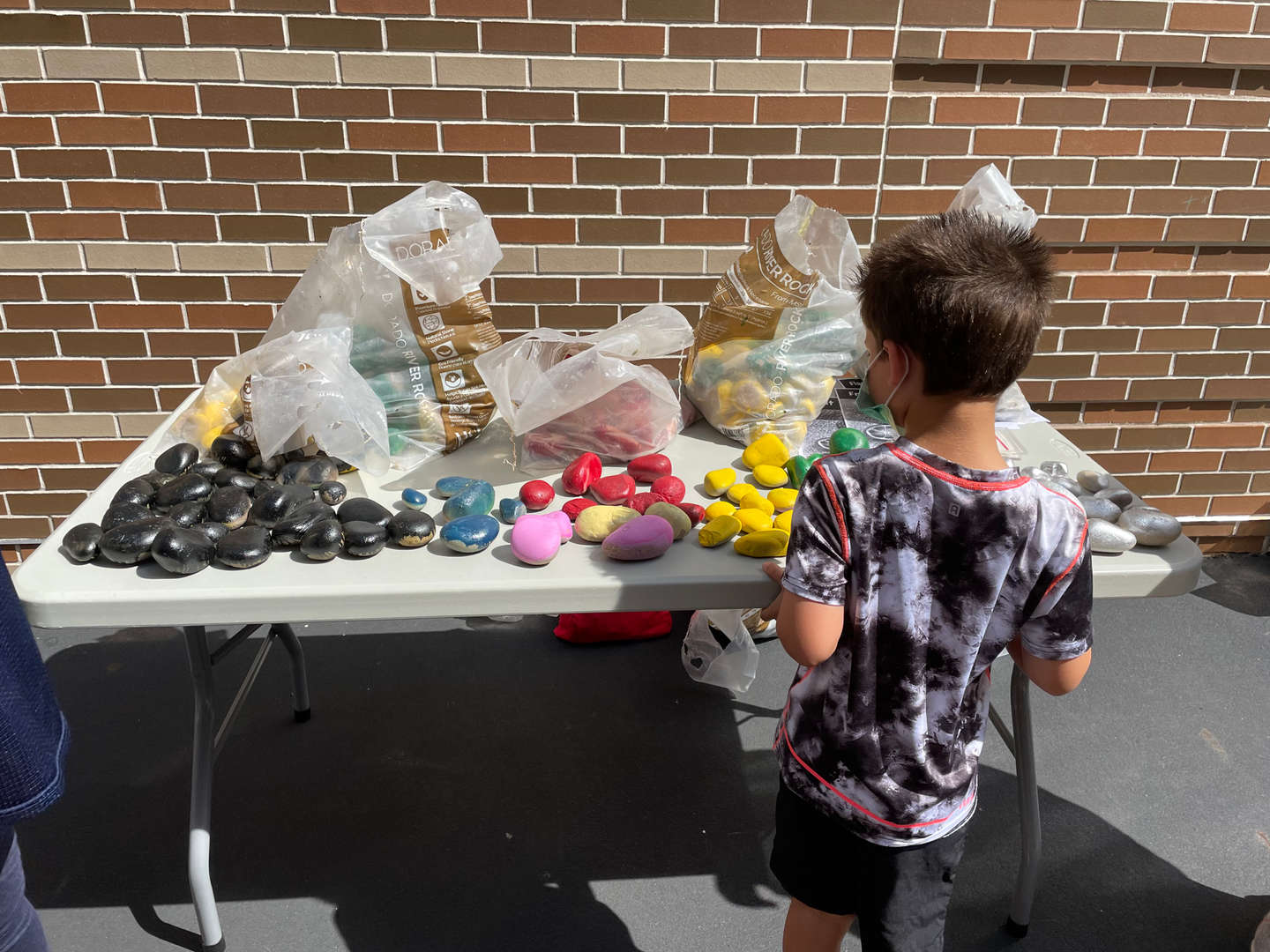 Picking out a rock to paint.