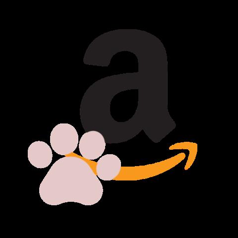 373R Amazon Smile