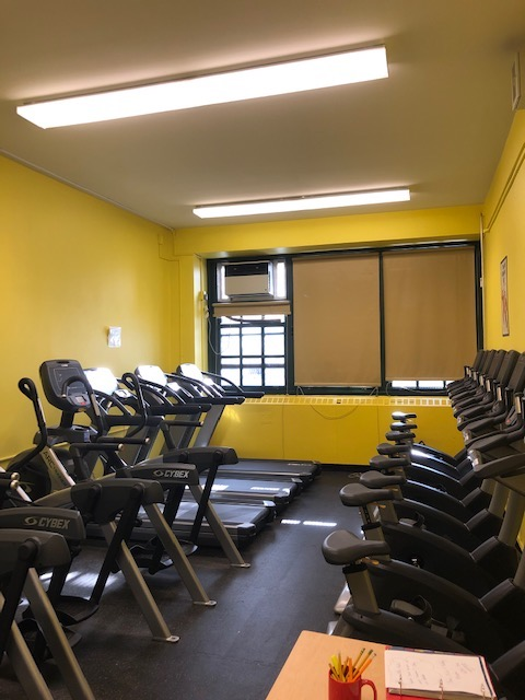 Treadmills and stationary bikes in the fitness room