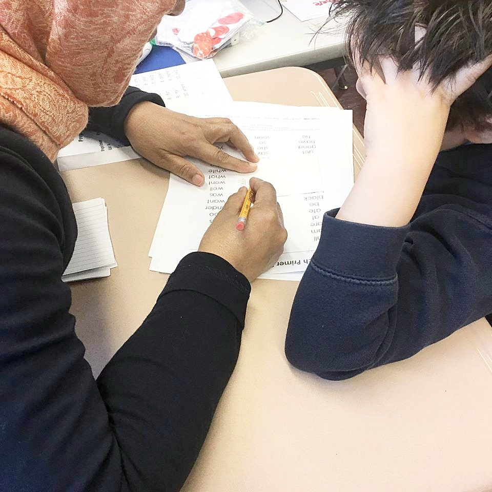 Teacher working on vocabulary with student