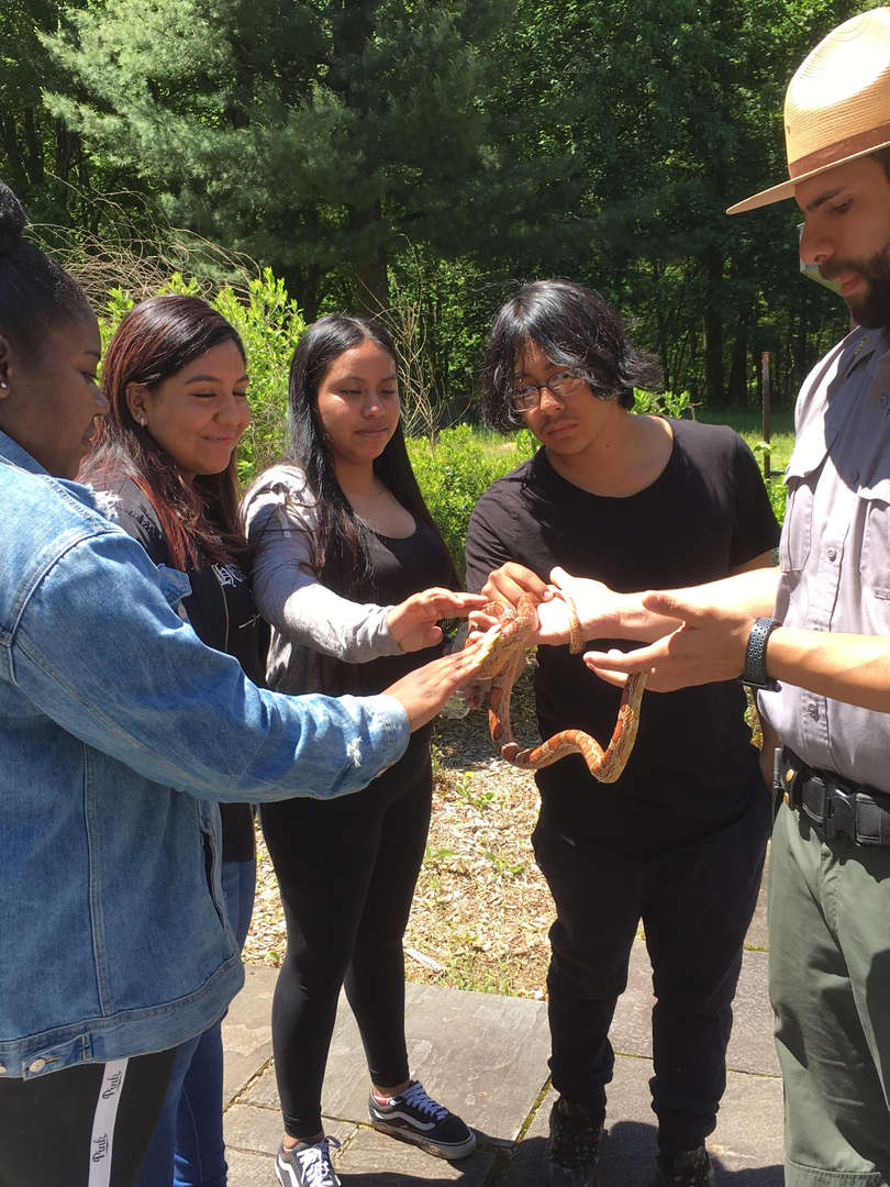 Students touching a snake