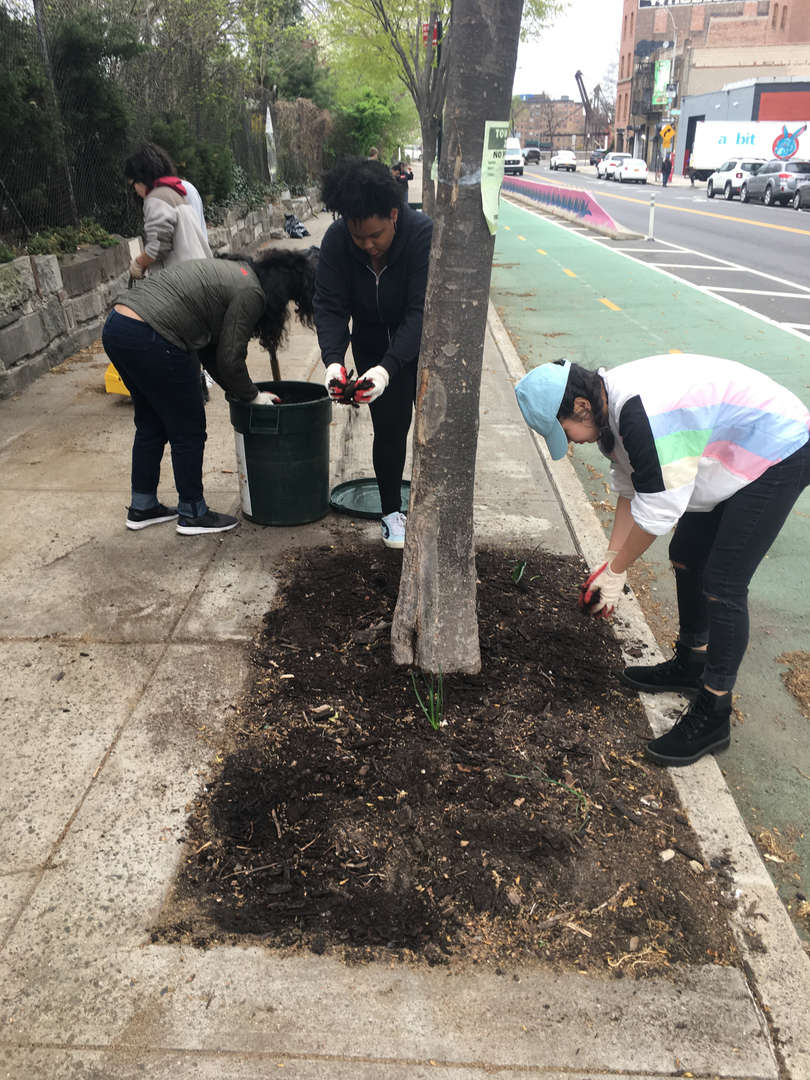 Students put handfuls of dirt into a garbage bin on the sidwalk