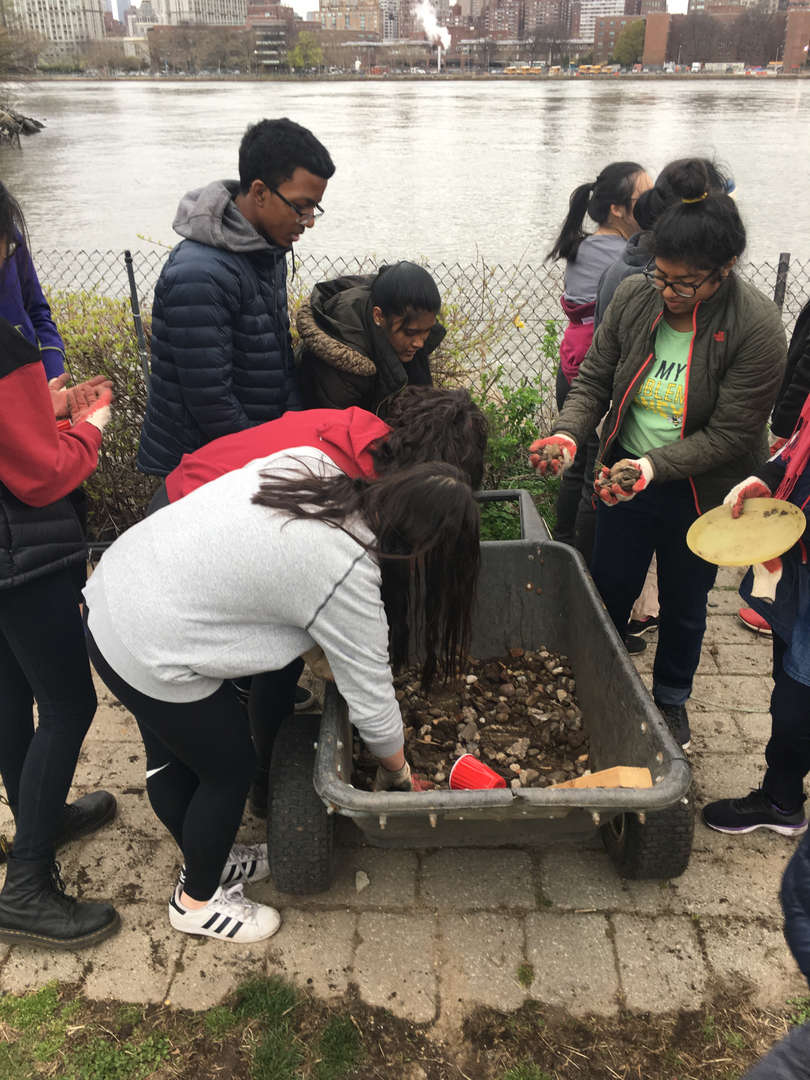 Students reach into a wheelbarrow filled with organic material