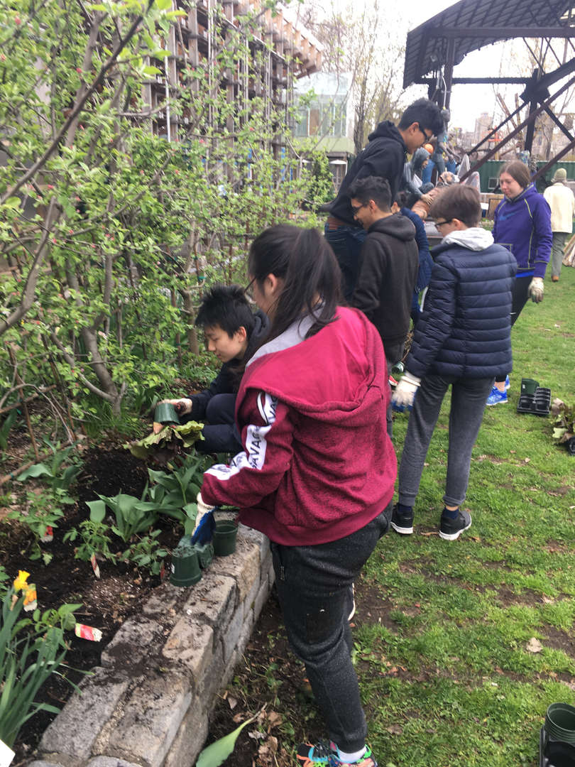A group of students stand beside their garden bed, some planting
