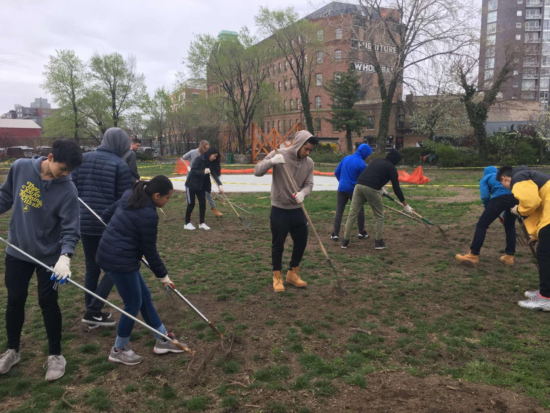 Students raking twigs on a lawn