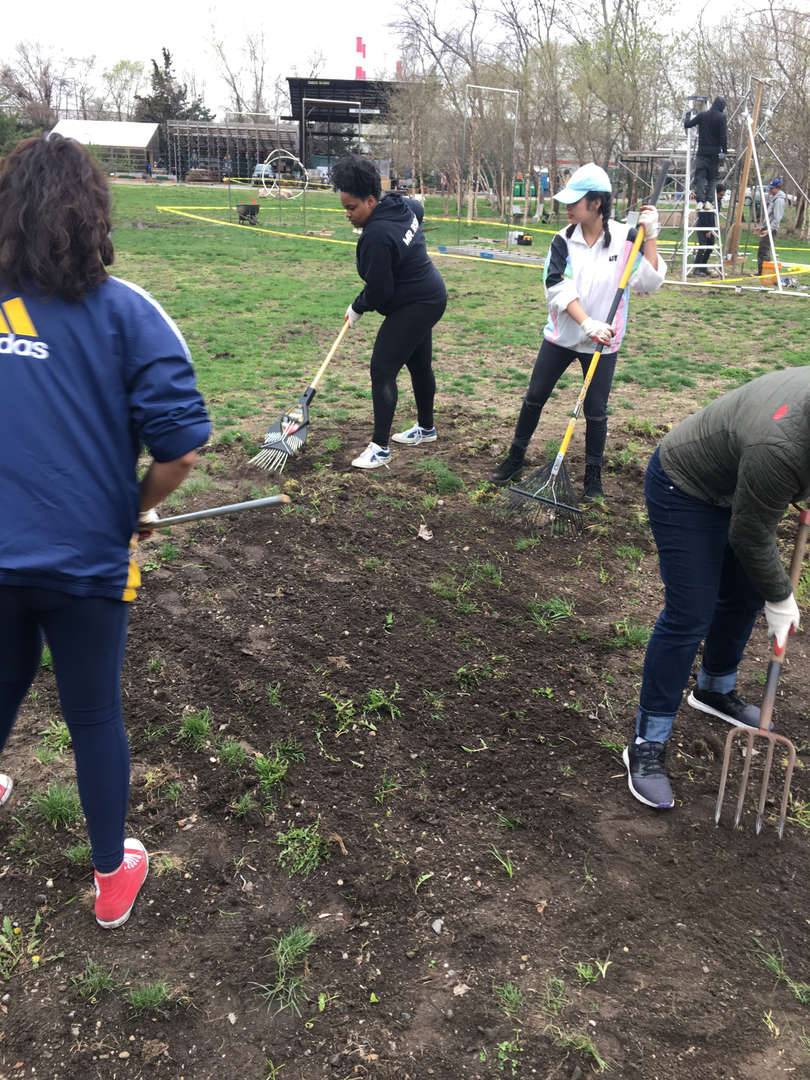 Four students rake together