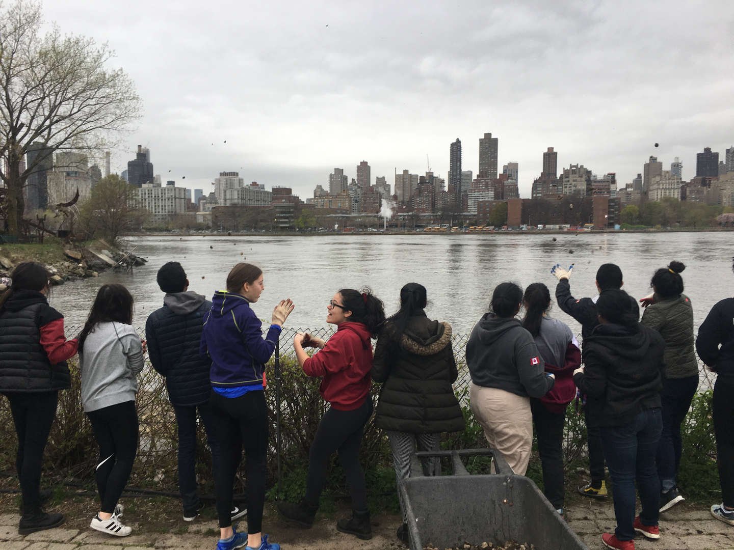 Students chat with each other while standing beside a glistening body of water